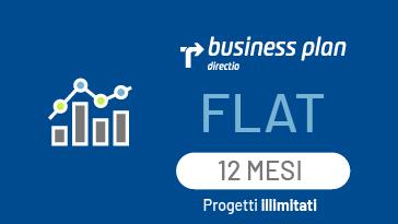 Business Plan Flat